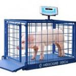 Весы для взвешивания животных серии ВСП4-60АЖСО